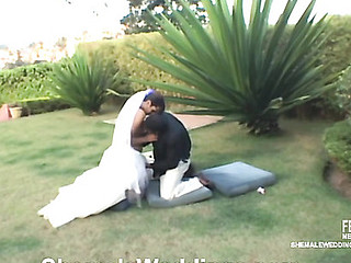 Thaina kinky shemale bride
