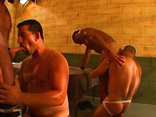 Prison hounds having fun